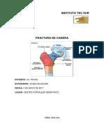 Documento de Fractura de Cadera