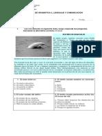 PRUEBA DE GRAMÁTICA 2.docx
