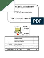 Laboratorio 8 organometalurgia