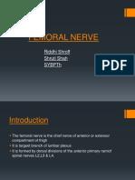 Femoral Nerve 03