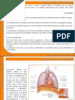 07 Sistema Cardiovascular (1)