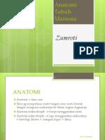 86311305 Anatomi Fisiologi Smk Kes