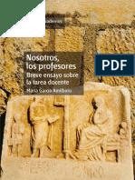 Nosotros, Los Profesores_ Breve Ensayo s - GarcAa Amilburu, MarAa(Author)