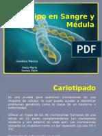 Cariotipo en Sangre y Médula