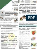 100802 Plegable Dengue (Juntos)