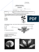 Prueba de Ciencias La Vida de Las Plantas
