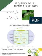 Defensa Química de La Plantas