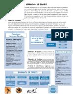 DIRECCION DE EQUIPO.docx