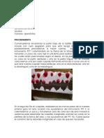 Practica Pkt y Guarda Oclusal