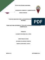 Plan de negocios para la incorporación de un labial natural (1).pdf