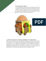10 Cosas Sobre El Huevo- 2015