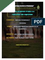 Monografia de Equinos