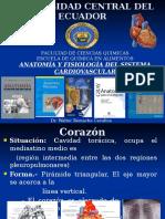 1 Sistema Cardiovascular Corregido