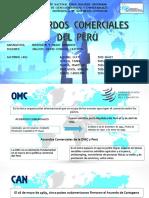 Acuerdo Comercial Peru Final