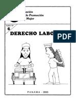 matdoc-Tema 6 Der Laboral.pdf
