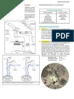 MICROSCOPIA 3.pdf