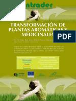 densidadade de plantas.pdf