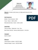 Martin Jara Resume