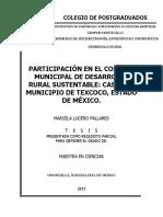 Lucero Pallares M MC Desarrollo Rural 2013