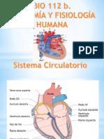 Repaso Tercer Parcial 2017 PDF. Bio 112b