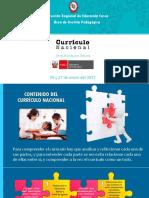 1_ESTRUCTURA_CURRICULO