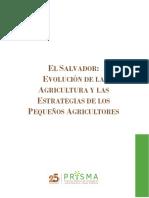 El Salvador Evolucion de La Agricultura y Las Estrategias de Los Pequenos Agricultores