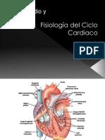 29.-fisiologia-del-ciclo-cardiaco-y-bombeo[1].ppt