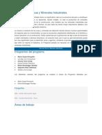 Programa de Rocas y Minerales Industriales