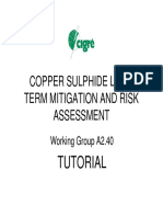 A2.40+Copper+Sulphide+long+term+mitigation