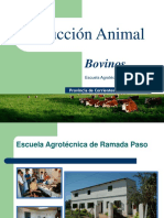 produccin-animal-119482340840937-3