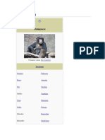 El Chimpance