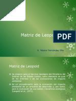 Matriz de Leopold Teoria