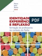 Identidade Experiencia e Reflexao