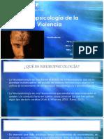 Neuropsicología de La Violencia