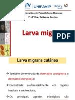 Larva migrans.pdf
