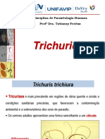 Trichuris.pdf
