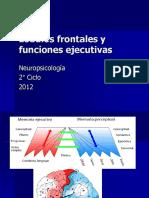 _LOBULOS_FRONTALES_Y_EJECUTIVOS_2_CICLO_2012