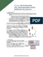 Wuolah-free-11. T. Americano Cruzi (Enfermedad de Chagas) (1)