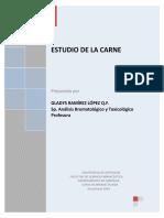 Carne_y_derivados2009.pdf
