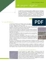 Atelier Papier Vegetal