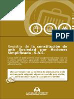Guía 20. Registro de La Constitución de Una S.a.S. (1)