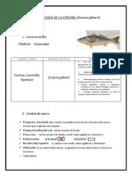 Ficha Técnica de La Corvina Imprimir