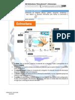 Infografia Fiestas Patrias