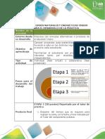 Guia Para El Desarrollo de La Práctica