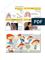 Sistema Respiratorioo