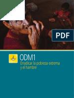 ODM1.pdf