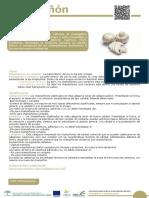 10_Champiñon.pdf