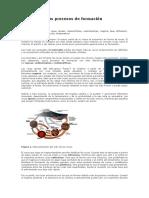 PRODESO DE FORMACION DE LAS ROCAS IGENAS.docx