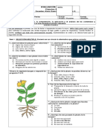 Evaluación de síntesis, ciencias Naturales 3° básico (2)