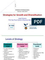 Strat Growth Divers - diversification